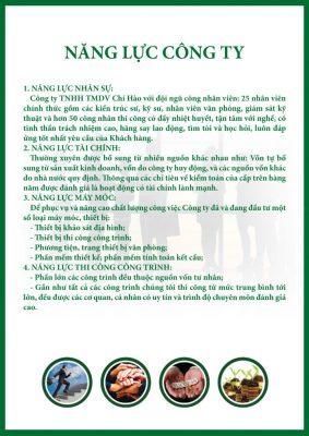 nang-luc-cong-ty-724x1024